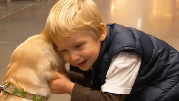 "Nick News: ""Service Dogs: Training a Service Dog"""
