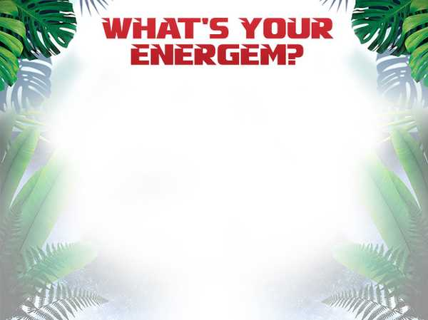 What's Your Energem?