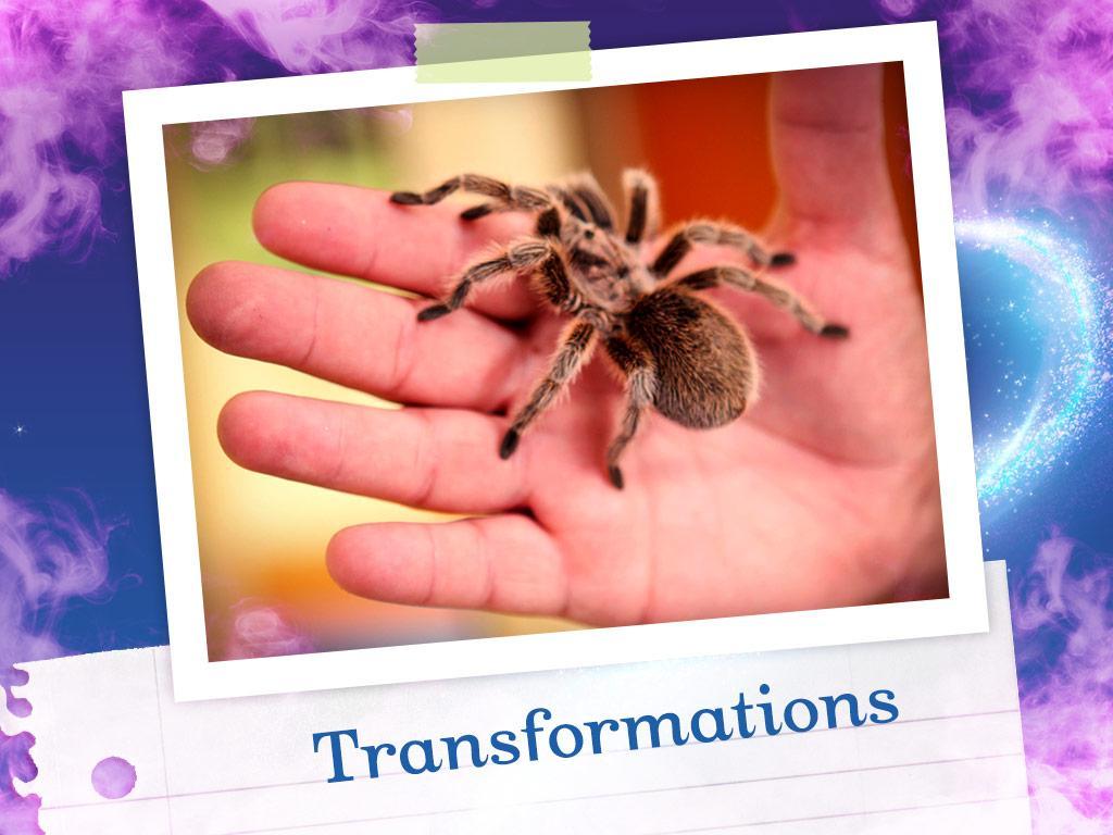 6. Transformations