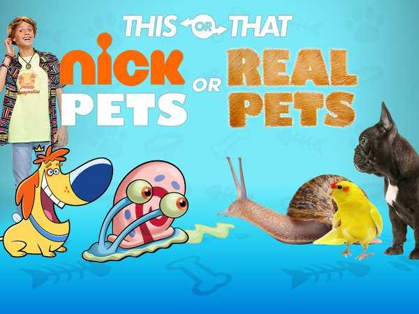 Nickelodeon: Nick Pets or Real Pets