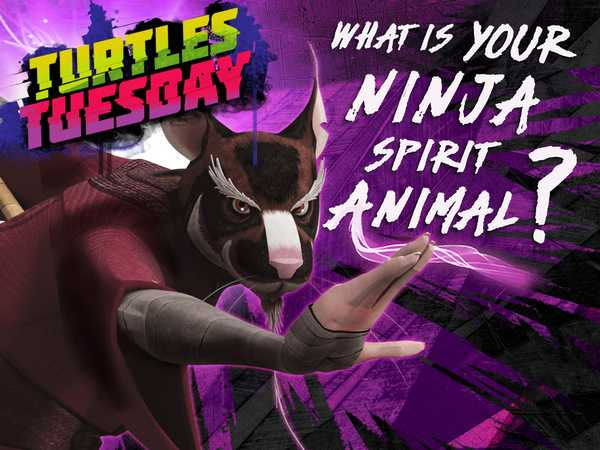 Teenage Mutant Ninja Turtles: What's Your Ninja Spirit Animal?