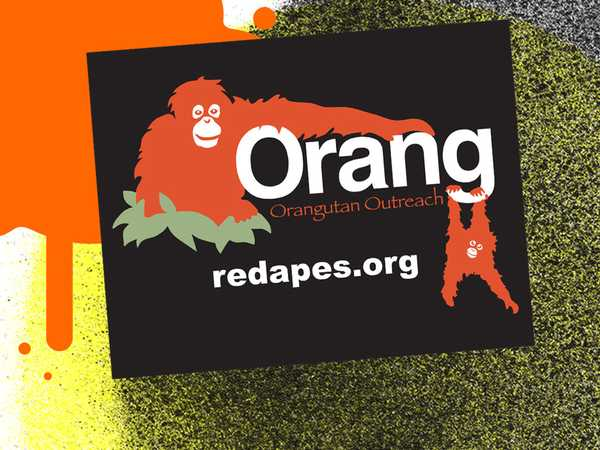 Orangutan Outreach Tile
