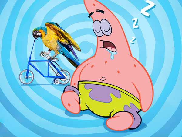 "SpongeBob SquarePants: ""Patrick's Longest Nap"""