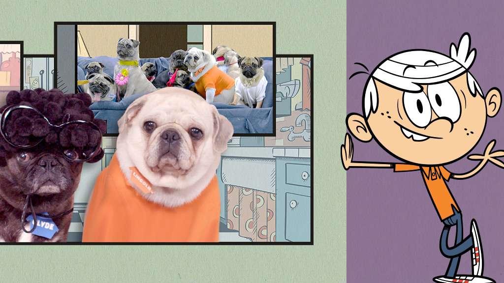 "The Loud House: ""Pug House Episode 1"""
