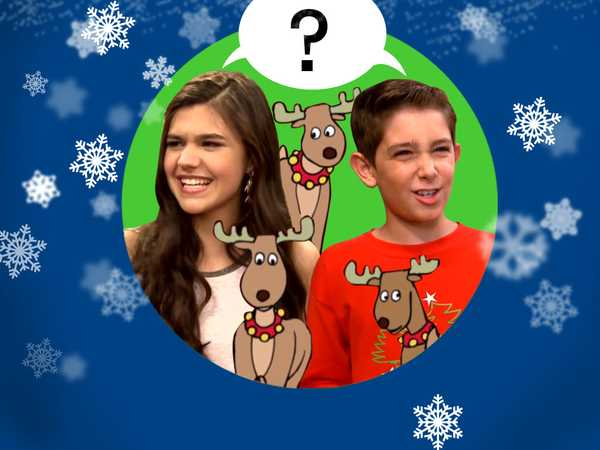 Name the Reindeer!