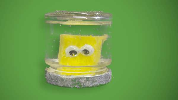 "SpongeBob SquarePants: ""SpongeBob Snow Globe"""