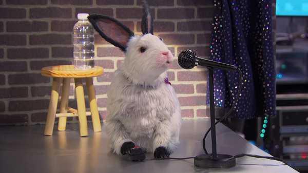 """The Thundermans: """"Dubby Bunny"""""""