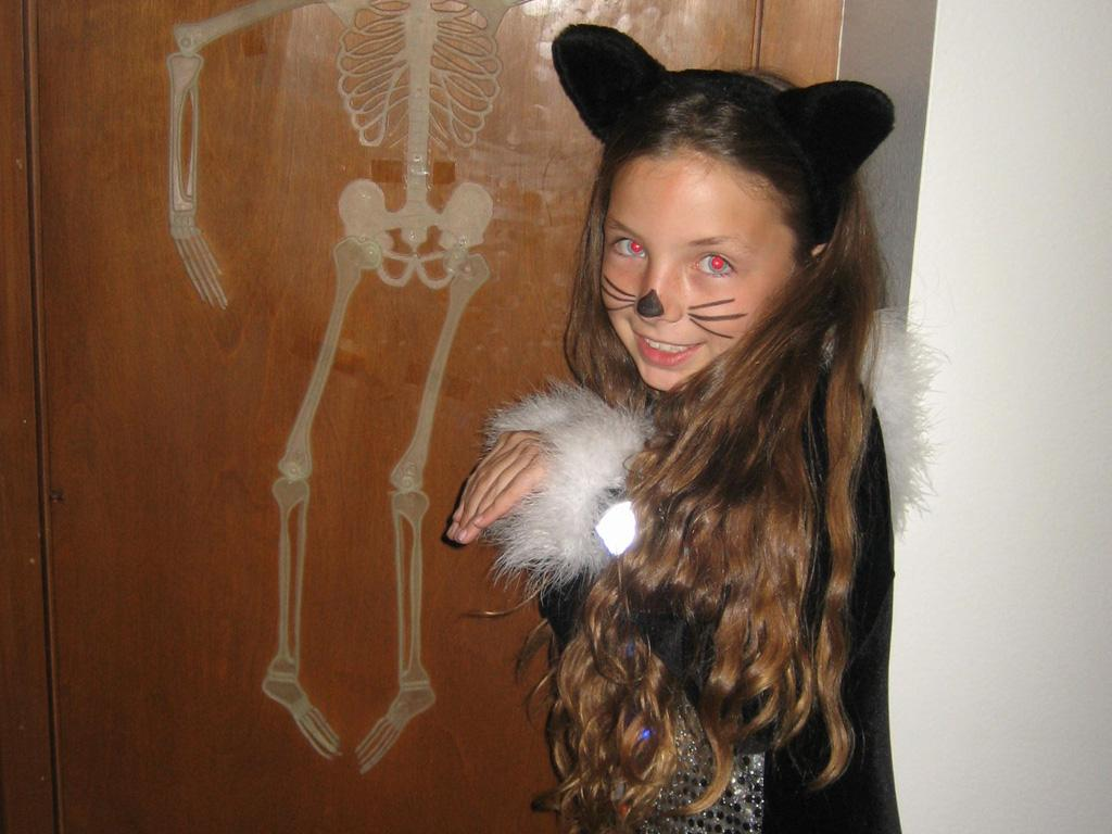 Cat's Got Your Candy