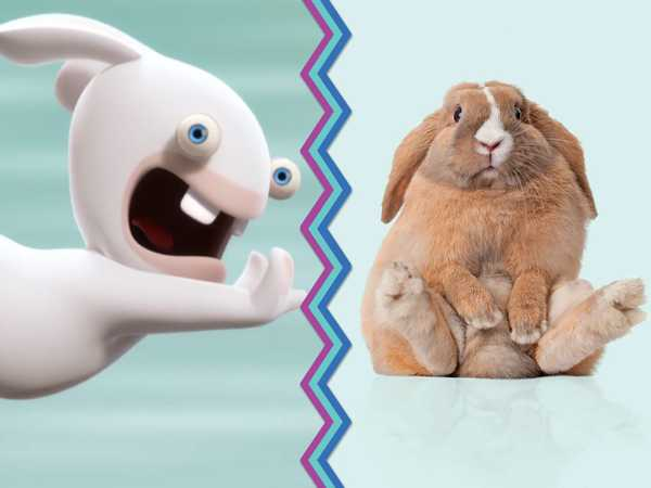 Rabbids: Rabbids Vs. Rabbits