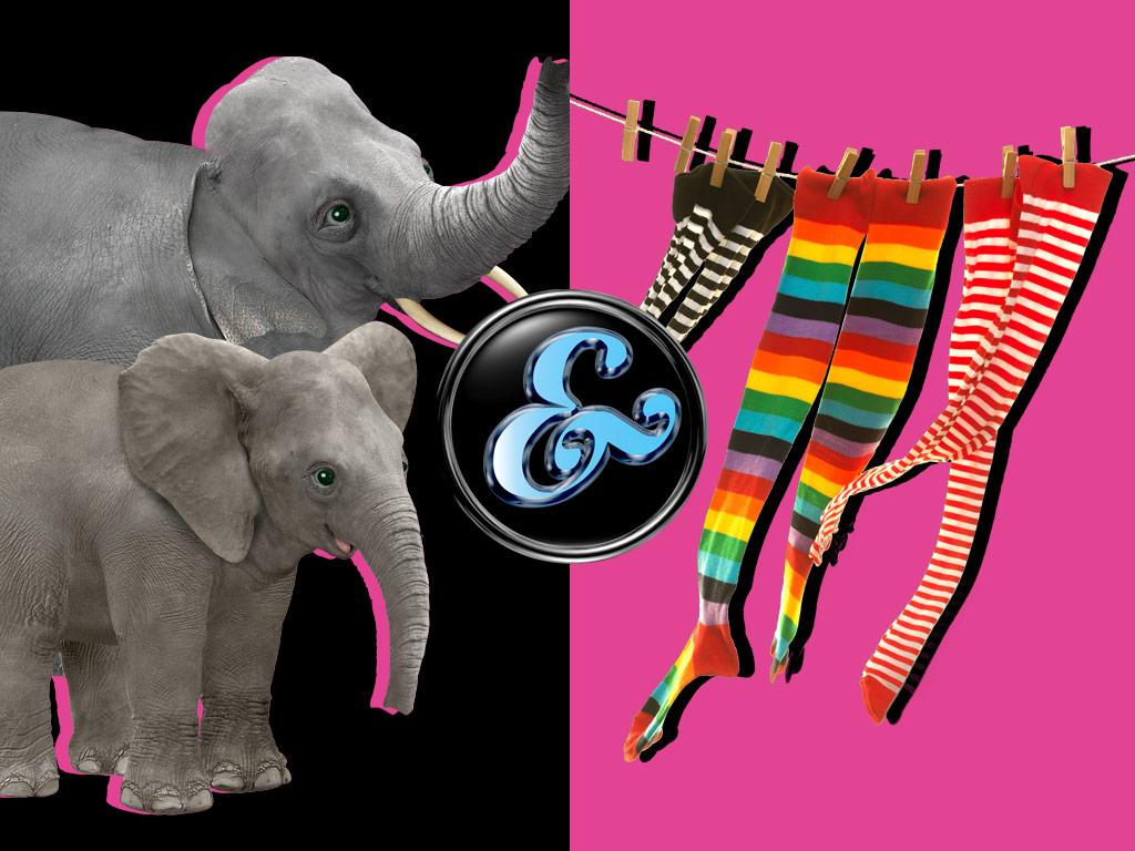 Elephants & Socks!