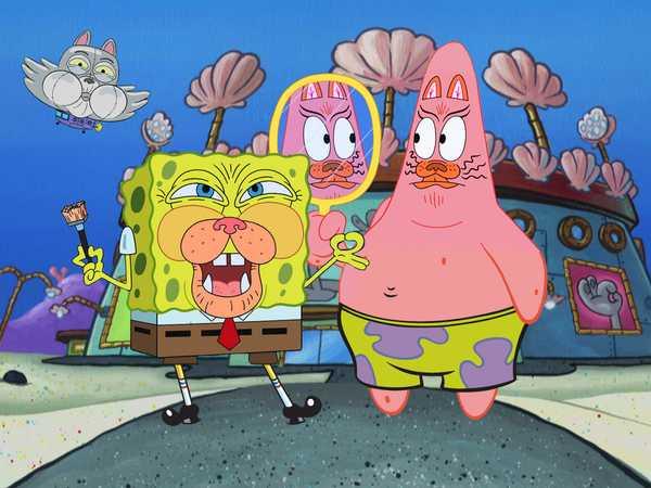 SpongeBob Squarepants: Kenny the Cat Fan Club!