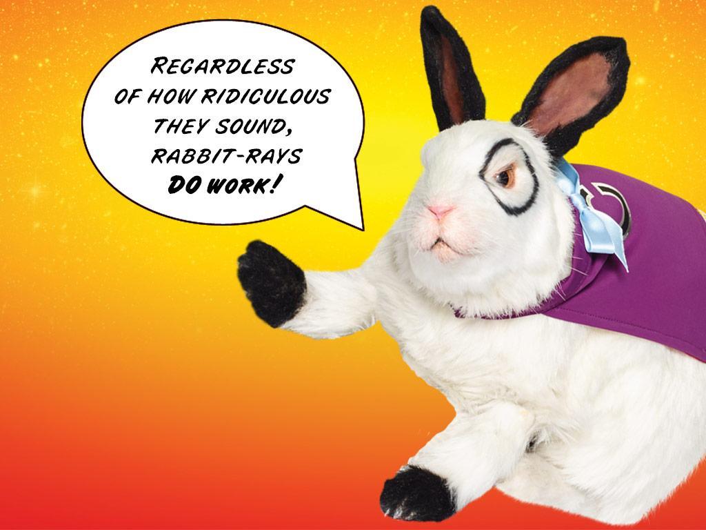 Bunny-fied