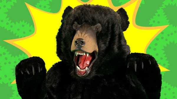 Bear Scares