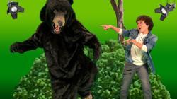 Truth or Bear