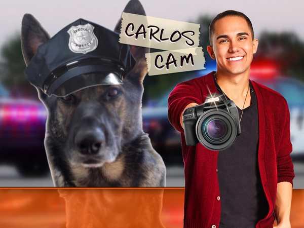 Carlos Cam: Sydney-Raye K-9 Detective
