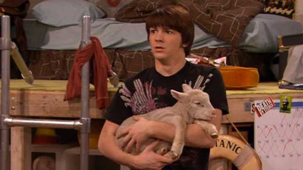 "Drake & Josh: ""Sheep Thrills"""