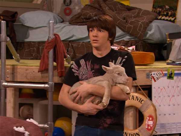 "Drake & Josh: ""Sheep Thrills"""