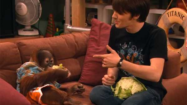 "Drake & Josh: ""My Dinner With Bobo"""