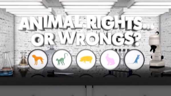 "Nick News Specials: ""Animal Rights…or Wrongs? """
