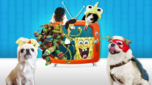 Pets Love Nickelodeon