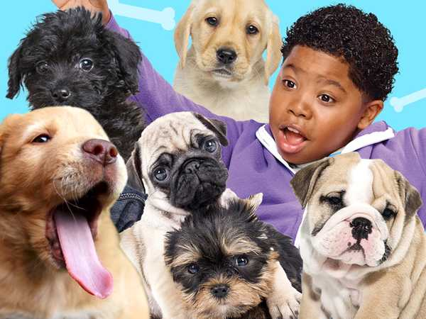 "Haunted Hathaways: ""Puppy Time"""