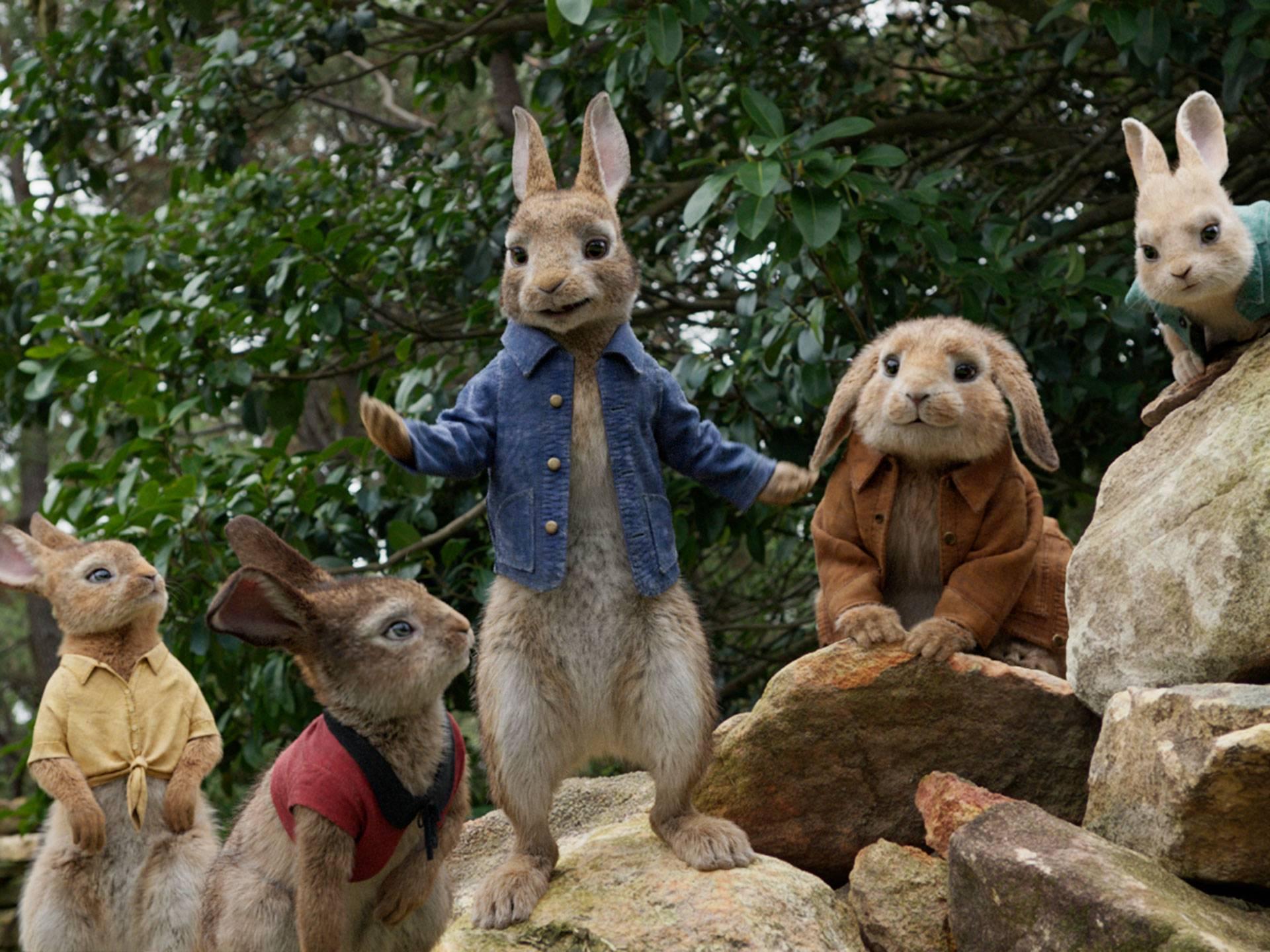 mgid:file:gsp:scenic:/international/nick-intl/images/series/orange-carpet/ep-24-peter-rabbit/peter-rabbit-02.jpg