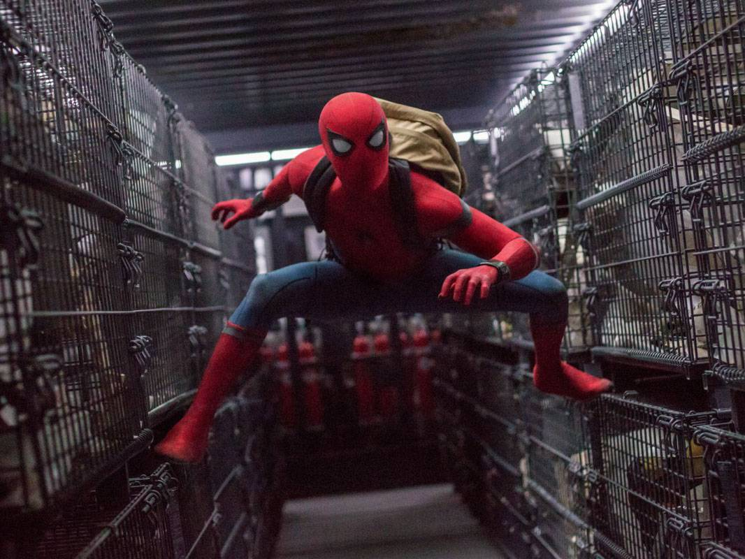 mgid:file:gsp:scenic:/international/nick-intl/images/series/orange-carpet/ep-19-spiderman/spiderman-homecoming-1.jpg